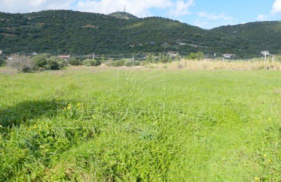 Olbia in vendita terreno edificabile di tre ettari