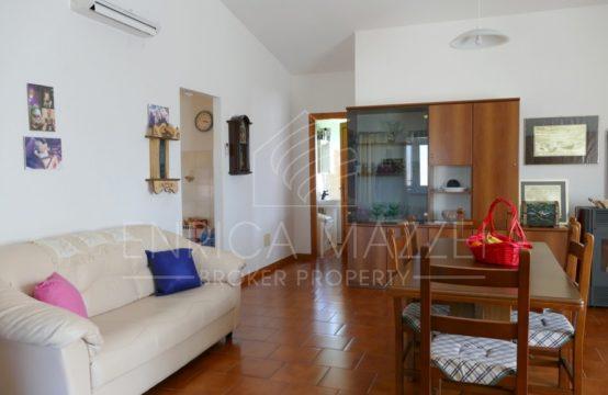 Olbia vendesi ampio appartamento | tre camere due bagni  cortile e box
